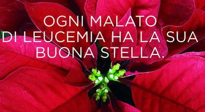 Nel prepartita con Reggio ci sarà vin brulè e panettone offerto da AIL Trentino con il supporto di MD