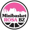 Basket Rosa