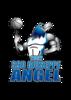 Angel Manfredonia