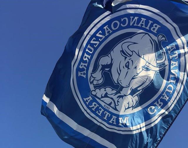 La bandiera della Gradinata Biancoazzurra, foto: Fonte Web