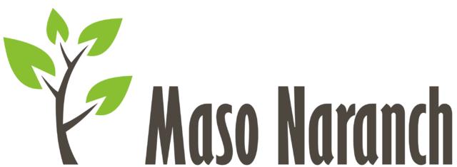 Maso Narach