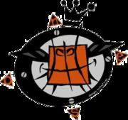 BMR Basket 2000 Reggio Emilia