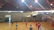 Leccenews24.it La Scuola di basket Lecce, riprende vittoriosa la marcia nella giostra dei playoff